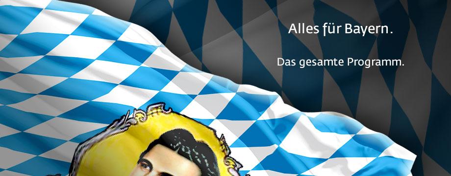 umfangreiches Bayernfahnen Sortiment Tischflagge bayerischen Rautenflagge mit Schwalbenschwanz